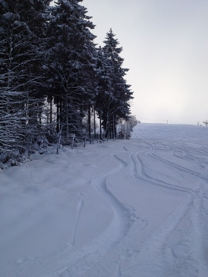 First tracks in Ovifat